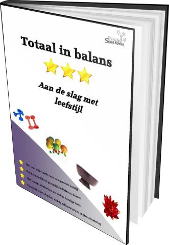 E-book totaal in balans